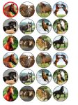 24 x Horses Rice Wafer Paper Bun Cup Cake Top Toppers